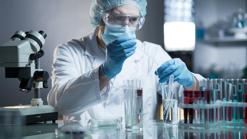 testowanie kosmetyków na zwierzętach w polsce