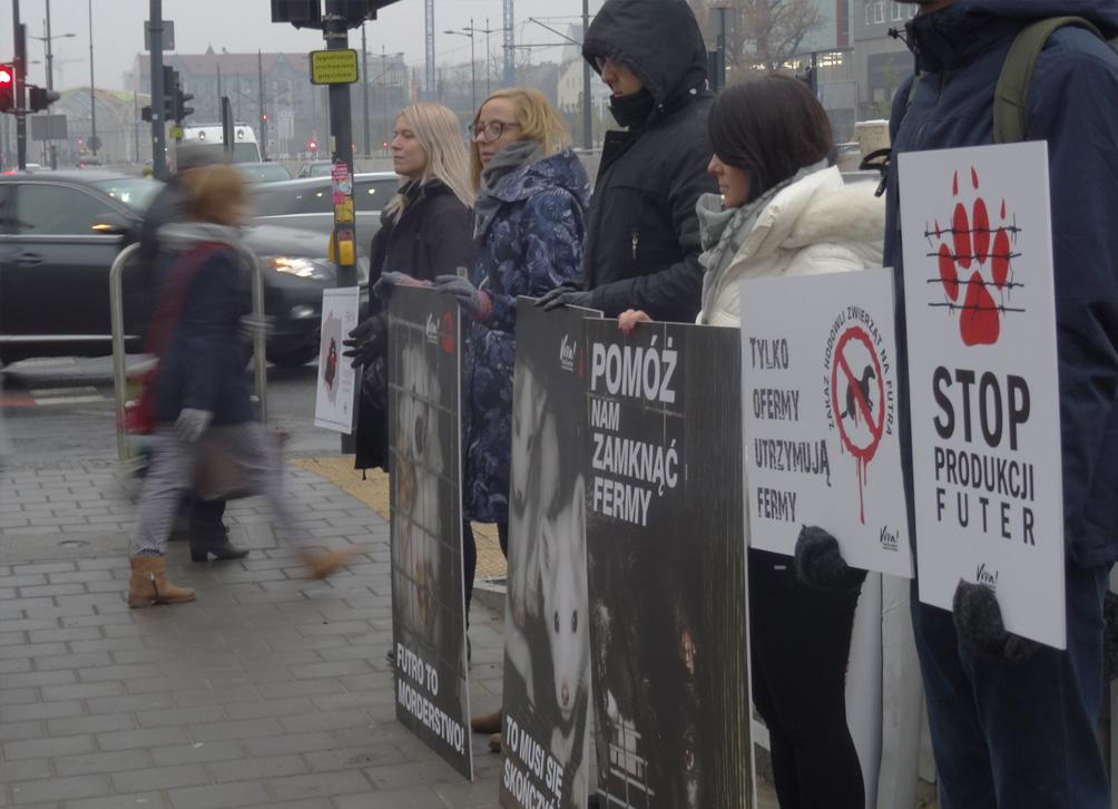 akcja antyfutrzarska billboardy citylighty plansze
