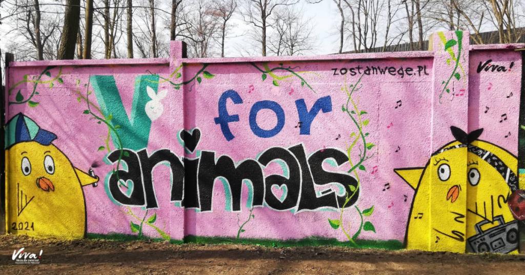 V for animals