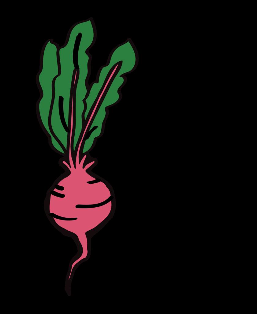 xv ogólnopolski tydzień wege zbliża się wielkimi krokami