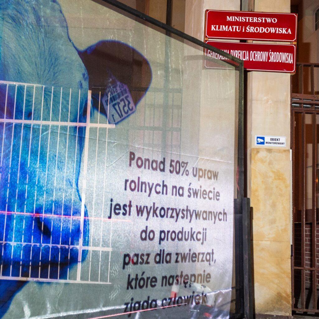 tydzień wege fundacja viva akcja uliczna