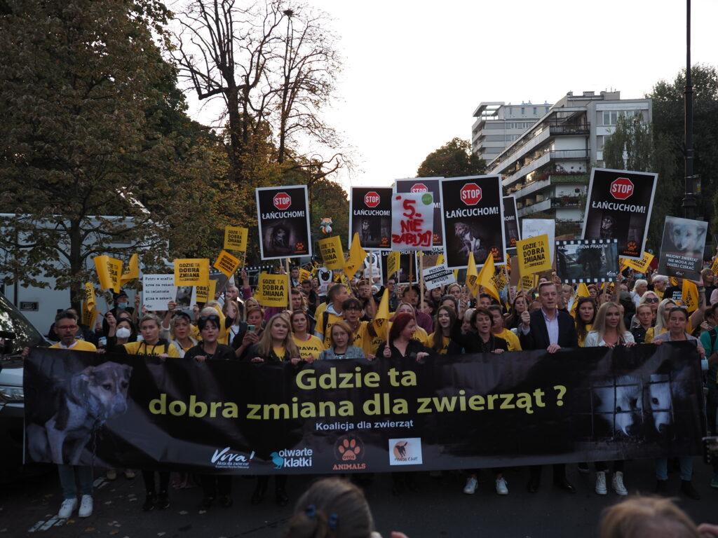 warszawa 4.10 wielki marsz dla zwierząt protest, gdzie ta dobra zmiana dla zwierząt